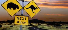 australia nature - Google-haku