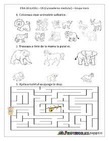 Fise de lucru - gradinita: Fise de lucru cu Animale salbatice - Cunoasterea mediului - Grupa mica, Grupa mijlocie, Grupa mare Montessori Math, Kids Corner, Preschool Worksheets, Coloring Pages For Kids, Kids Room, Kindergarten, Diagram, Books, Ash Hair