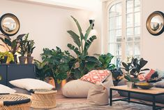 Visit to La Voyagerie, the new premises of the start-up Evaneos - Office Crafter : Office Decor Ideas to Inspire Your Team's Best Work Still Working, Coworking Space, Plant Wall, Office Decor, Office Ideas, Decoration, Relax, Flooring, Workplace