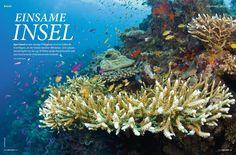 Unterwasser - Deutsche Tauchzeitschrift