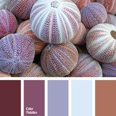 Die Farbschema, die Karamell-Braun, Kirschrot-Lila und Flieder-Hellblau kombiniert. Diese Farbpalette eignet sich ideal für die Gestaltung von Arbeitszimme.