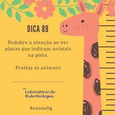 #agua #analisedeagua #baiadeguanabara #errejota #labhidroufrj #riodejaneiro #ufrj #eusoubg #animais #proteção