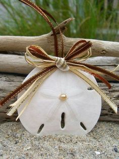 Sand Dollar Holiday Ornament-Home Decor Beach, Wedding Favors, Coastal Home… Seashell Christmas Ornaments, Beach Ornaments, Nautical Christmas, Shell Ornaments, Ornament Crafts, Sea Crafts, Seashell Crafts, Sand Dollar Art, Playa Beach