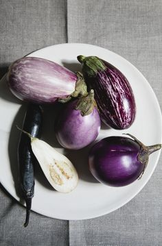 eggplant / nicole franzen//