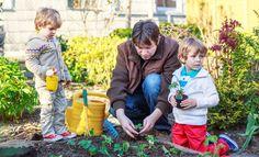 Harrastaako perheesi puutarhanhoitoa?