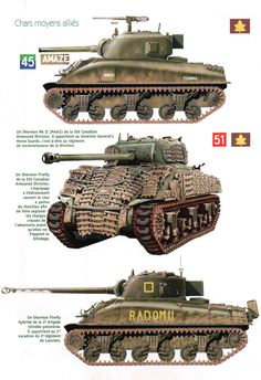 Fun fact, the second tank has tank tracks on it because those tanks had weak armor so they would put anything on the front to keep from shells get through where ever was weakest point. Canadian Soldiers, Canadian Army, Army Vehicles, Armored Vehicles, Sherman Firefly, Self Propelled Artillery, Tank Armor, Sherman Tank, War Thunder