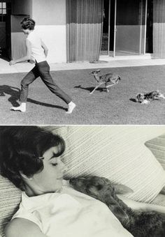 Audrey & Bambi