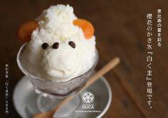 OUCA White Bear