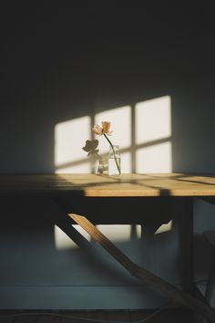 This image captures the softness created by the gentle light and harmonious colours. The silhouette of the window frame from the light gives the image a lithe and ambient aesthetic, at the same time the shadow of the flower and vase-- (to be continued) Light And Shadow Photography, Still Life Photography, Art Photography, Photography Flowers, A Level Photography, Vintage Photography, Creative Photography, Newborn Photography, Landscape Photography