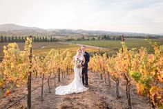 the girl & the fig CATERS! | Vineyard Wedding at Copain Wines in Healdsburg, CA | PartySlate