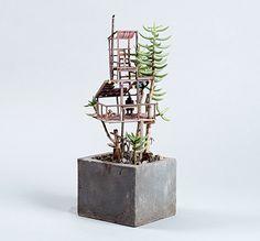 Em vasos de suculentas e cactos, Jedediah Corwyn constrói as mais legais mini…