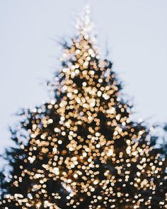 Christmas | Image via thenletitbe.tumblr.com                                                                                                                                                                                 Mais