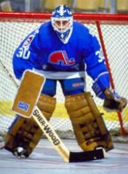 Google Image Result for http://www.sportsecyclopedia.com/nhl/quebec/malarchukQ.jpg