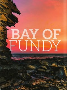 Few places on Earth are as awe-inspiring as the Bay of Fundy in New Brunswick. A visit to this special place will reward you with magnificent tides, breathtaking coastline and endless adventure. Here's how to experience it best.