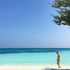 A walk to remember  #holiday #sand #sea #island #atoll #nature #memories #Maldives #summer #sunshine by @janeko https://t.co/vDqH29Qcx0 (via Twitter http://twitter.com/maldivesinpics/status/723049460759166977) - http://ift.tt/1HQJd81