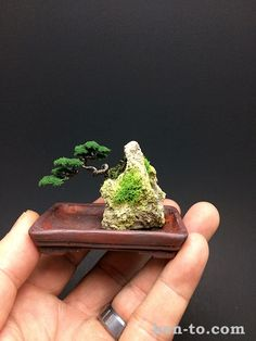 Wire bonsai tree landscape by Ken To by KenToArt on DeviantArt