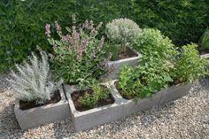 Pohled zhora. Základem stavby jsou prvky ztraceného bednění. Sister Wedding, Kraut, Herb Garden, Pergola, Herbs, Health, Flowers, Plants, Gardens