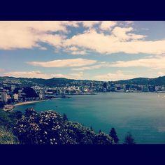 View over Wellington Harbour, New Zealand