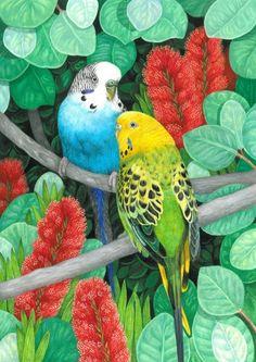 Avril Haynes, artist and illustrator | Home