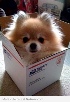 you've got mail :)  Come on @Erin Wygant, send me Rory for a visit. ;-)