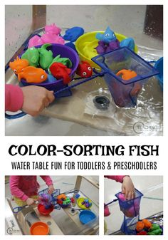 Toddlers and preschoolers will build color recognition skills and strengthen fine motor muscles while scooping fish out of water. Great for an ocean theme! Fish Activities, Sorting Activities, Preschool Learning Activities, Preschool Lessons, Color Activities, Preschool Activities, Toddler Themes, Toddler Fun, Toddler Preschool