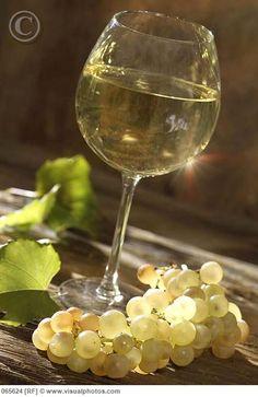 glass of white Bourgogne wine