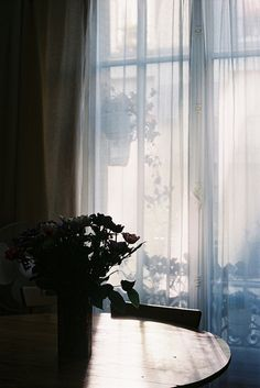 sit here a moment untitled by isabelle bertolini on Flickr.