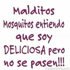 Malditos mosquitos