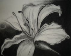 Image detail for -Charcoal on paper