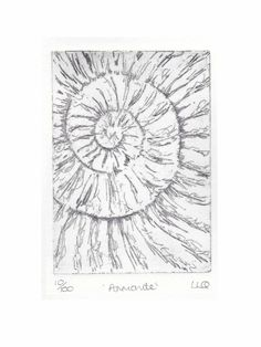 Etching no.10 of an ammonite fossil in an edition of 100 £30.00