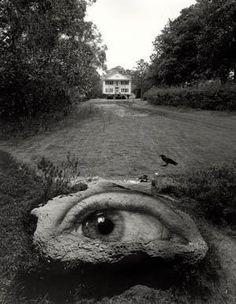 Testigo ocular sin conciencia