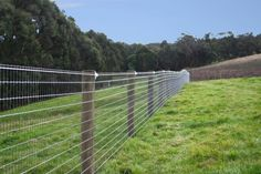 Equi Mesh Horse Fencing. For the property perimeter to keep out unwanted dogs