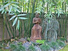 Asian-Inspired Backyard : Outdoors : Home  Garden Television. Need nice fence behind bamboo b/c bamboo won't fill out on bottom.