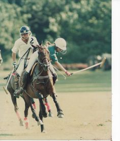 Polo Pony. can't wait to start playing again.......
