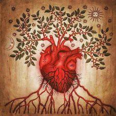 Anatomical heart illustration by, Daniel Martin Diaz Illustrations, Illustration Art, Anatomical Heart, Human Heart, Cardiology, Anatomy Art, Eye Art, Heart Art, Sacred Heart
