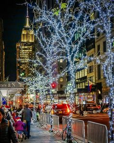 Christmas Lights by chandleLee by - The Best Photos and Videos of New York City including the Statue of Liberty Brooklyn Bridge Central Park Empire State Building Chrysler Building and other popular New York places and attractions. New York City Christmas, New York Winter, Costa, Just Dream, Chrysler Building, Christmas Lights, Christmas Time, Christmas Blessings, Christmas Photos