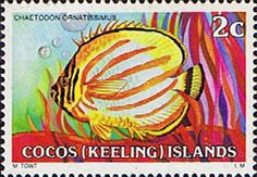 Cocos Keeling Islands 1979 Fishes SG35 Fine Mint Scott Other Cocos Keeling Island Stamps HERE