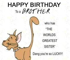 Funny Birthday Wishes For Brother In Hindi<br> Birthday Wishes For Brother with images and quotes. Celebrate your brother's birthday with our happy and funny birthday wishes compilation! Happy Birthday Wishes Quotes, Happy Birthday Text, Best Birthday Wishes, Funny Birthday, Birthday Nails, Birthday Stuff, Birthday Crafts, Birthday Bash, Birthday Presents
