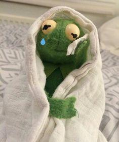Kermit The Frog Crying Meme, New Memes, Funny Memes, Meme Meme, Sapo Kermit, Memes Lindos, Laughing Funny, Crying Meme, Cute Love Memes, Mood Pics