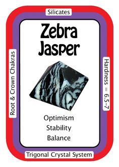 Zebra Jasper