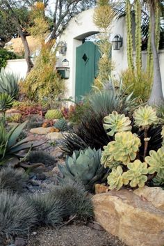 Garden for an arid climate - desert garden with succulents and stucco walls
