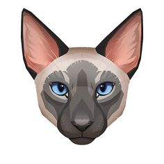 """Siamese Cat Face"" by Paula Lucas. Lucas Arts, Tecno, Warrior Cats, Cat Face, Siamese Cats, Sonic The Hedgehog, Pikachu, Concept, Drawings"