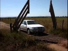 Cattle Guard Grate with Automatic Gate