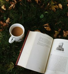 Book and coffee in fall