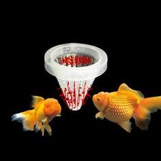 Aquariums & Tanks   Pets Alpha Automatic Fish Feeder, Walleye Fishing, Carp Fishing, Ice Fishing, Red Worms, Cichlid Fish, Brine Shrimp, Parrot Pet, Pisces