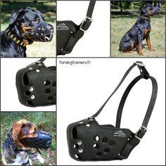 #Muselière d'#attaque pour #chiens de #police «#Mordant», réalisée en cuir naturel renforcé de plaque métallique -> 33,00 €  @fordogtrainersf Pensez à mentionner «J'aime» si ce produit vous plaît.