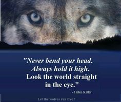 But oh, I do hope you're wise: Think twice before you look a wolf in the eye. Wolf Spirit, My Spirit Animal, Great Quotes, Quotes To Live By, Super Quotes, Awesome Quotes, Motivational Quotes, Inspirational Quotes, Wolf Quotes