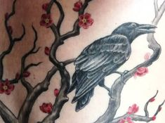 Get Thousands of Lovely Cherry Blossom Tree And Crow Tattoo Design Made By Black Ink Designs With Images and Photos Crow Tattoo Design, Tattoo Designs, Tattoo Ideas, Cherry Blossom Tree, Blossom Trees, Cherry Tree Tattoos, Tattoo Inspiration, Henna, Ink