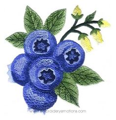 Realistic Blueberry Machine Embroidery Design  Rblu1010