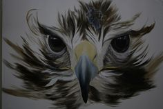 ST 65 cm x 90 cm Oleo-Lienzo 2008 2800€ #arte #art #cuban #CesarIvan Bald Eagle, Bird, Animals, Canvases, Birds, Animaux, Animal, Animales, Animais